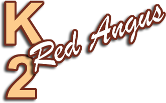 K2 Red Angus